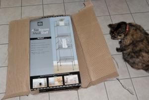 Box and cat.