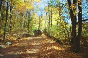 Copyright Amanda McNeil. Image of a hay ride down a country road surrounded by fall colors.