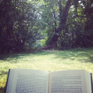 My view reading next to the Charles River (including my book, of course!)